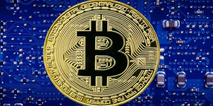 Script that Builds your Bitcoin Investment Business Effectively