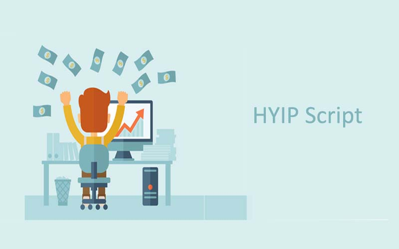 How does HYIP Script work?