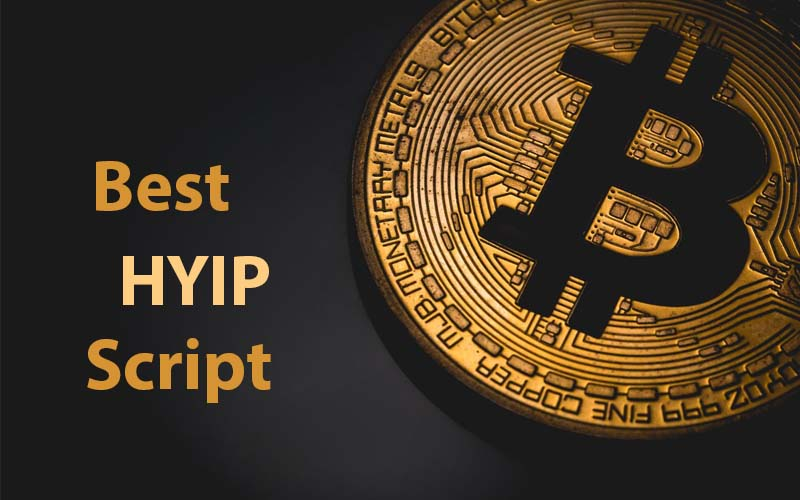 best hyip script