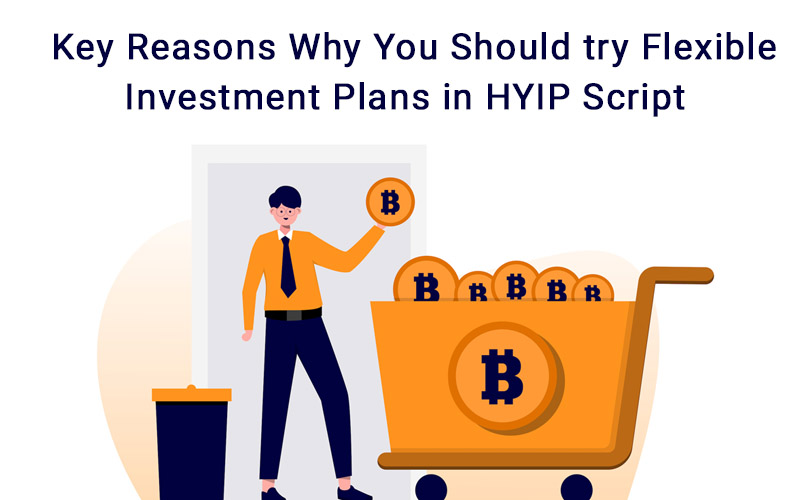 Key Reasons Why You Should try Flexible Investment Plans in HYIP Script
