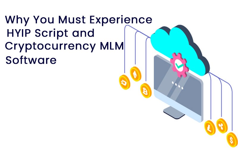 Why You Must Experience HYIP Script and Cryptocurrency MLM Software