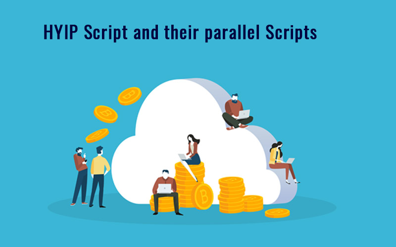 HYIP Script and their parallel Scripts